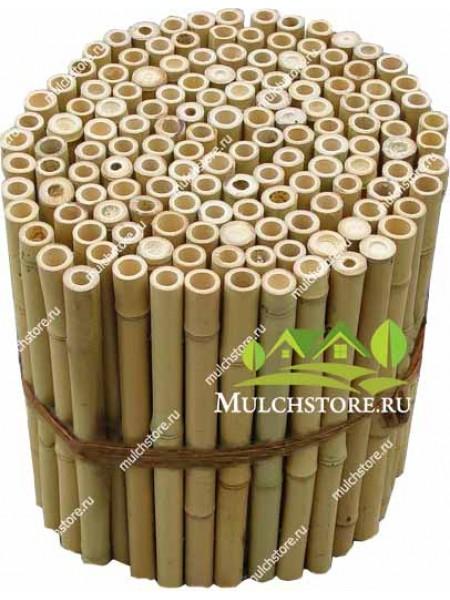 Забор из бамбука, 2*2 м